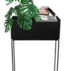 Macetas – front w plant and books(Amb)